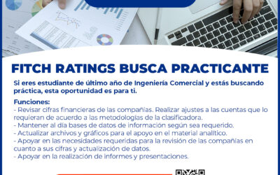 Fitch Ratings busca practicante